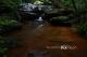 Phu Phan National Park