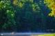 ปางอุ๋ง หรือโครงการสวนป่าในพระราชดำริ