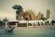 พิพิธภัณฑ์ลูกหลานพันธุ์มังกร (อุทยานมังกรสวรรค์)